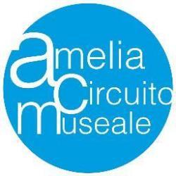 Museo di Amelia